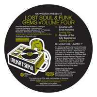Various Artists - Lost Soul & Funk Gems Volume Four