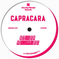 Capracara - Fake Drukqs / Blue Balloon